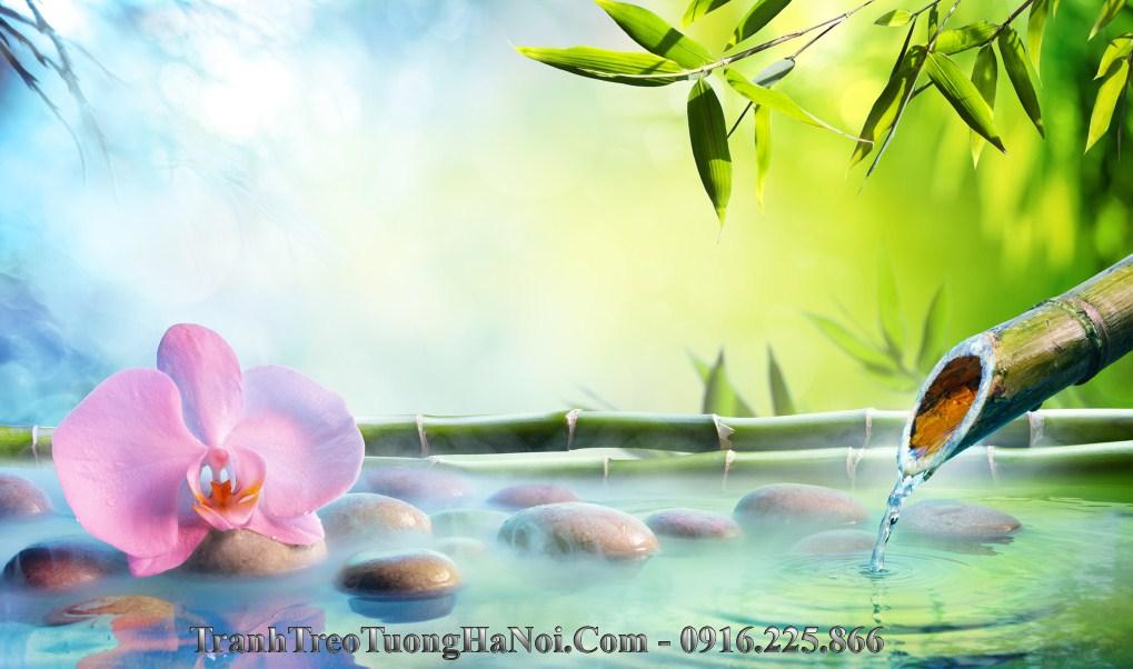 hinh anh spa hoa lan da truc thien nhien amia sp134
