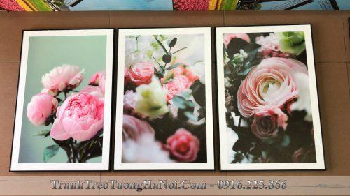 Hinh anh thuc te mau 3 tam canvas hoa mau don amia 1677