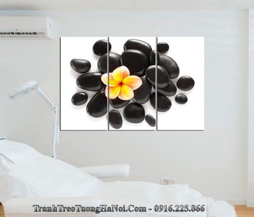 Tranh hoa da treo tuong phong spa amia sp181