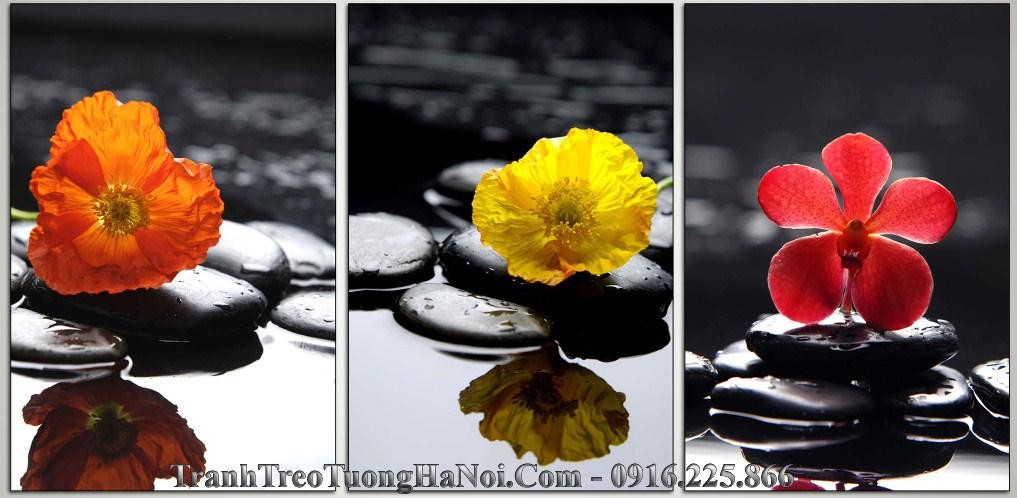 tranh spa hoa da thien nhien amia 999