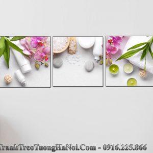 Tranh spa hoa lan da 3 tam vuong