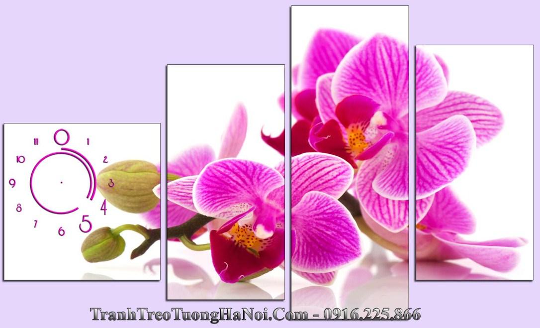 tranh spa hoa phong lan phu quy amia 1037
