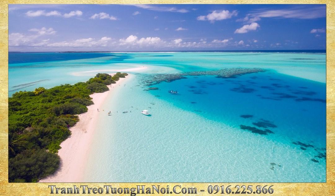 Phong canh dep bien xanh o maldives bien 114