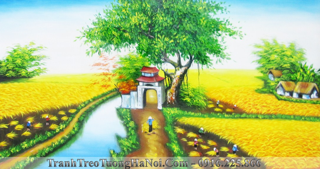 Tranh canh dong lua chin que em AmiA TSD 227