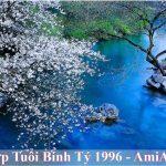Tranh hop tuoi binh ty 1996 treo phong khach phong ngu phong an