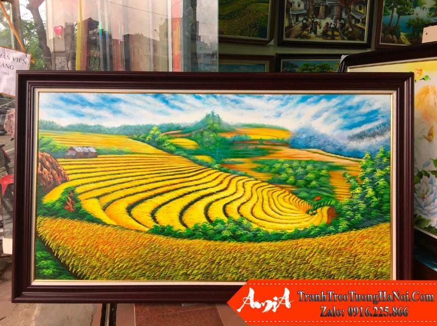 Tranh ve lua chin tren ruong bac thang son dau Amia TSD 428