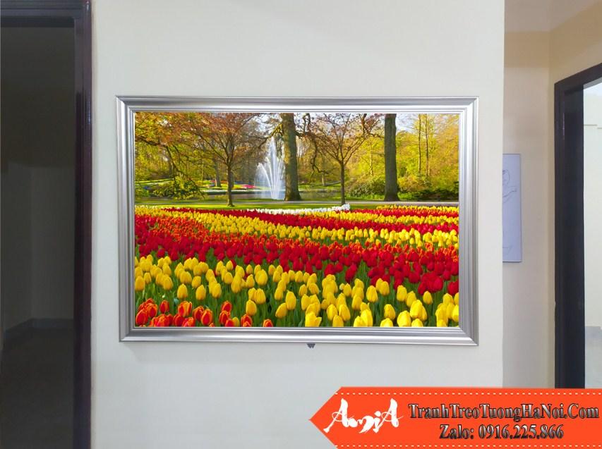 Tranh cong vien hoa tulip treo chung cu hien dai amia 220