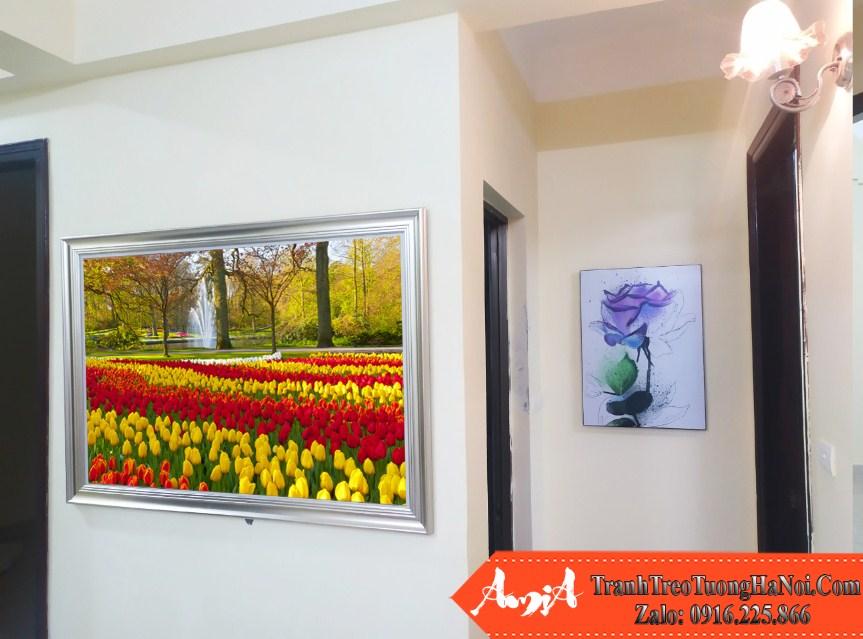 Tranh treo truoc cua buong ngu chung cu cong vien hoa tulip amia 220