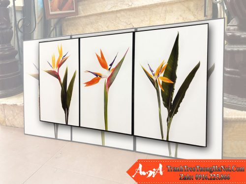 Bo 3 tranh canvas hoa thien dieu don gian ma dep amia 1846