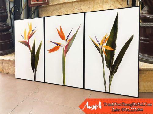 Tranh treo tuong canvas hinh hoa thien dieu amia 1846