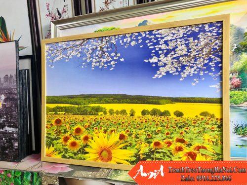 Tranh canvas hoa huong duong 1 tam kho nho